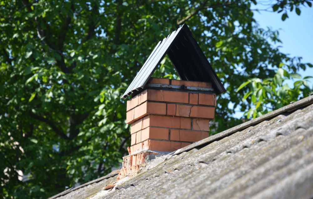 Observe your chimney and nearby structures. Look for signs of entry