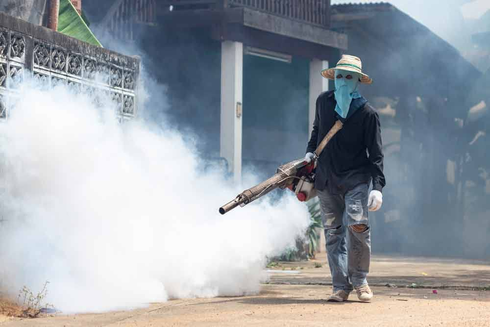 Do Pest Control Companies Spray for Mosquitoes?
