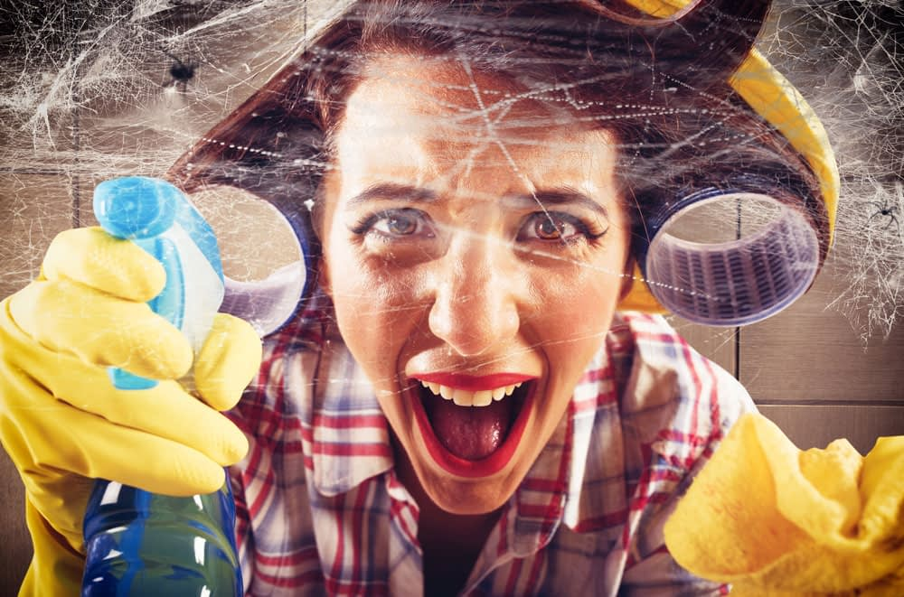 How To Get Rid of Spiders In Your Home and Keep Them Out
