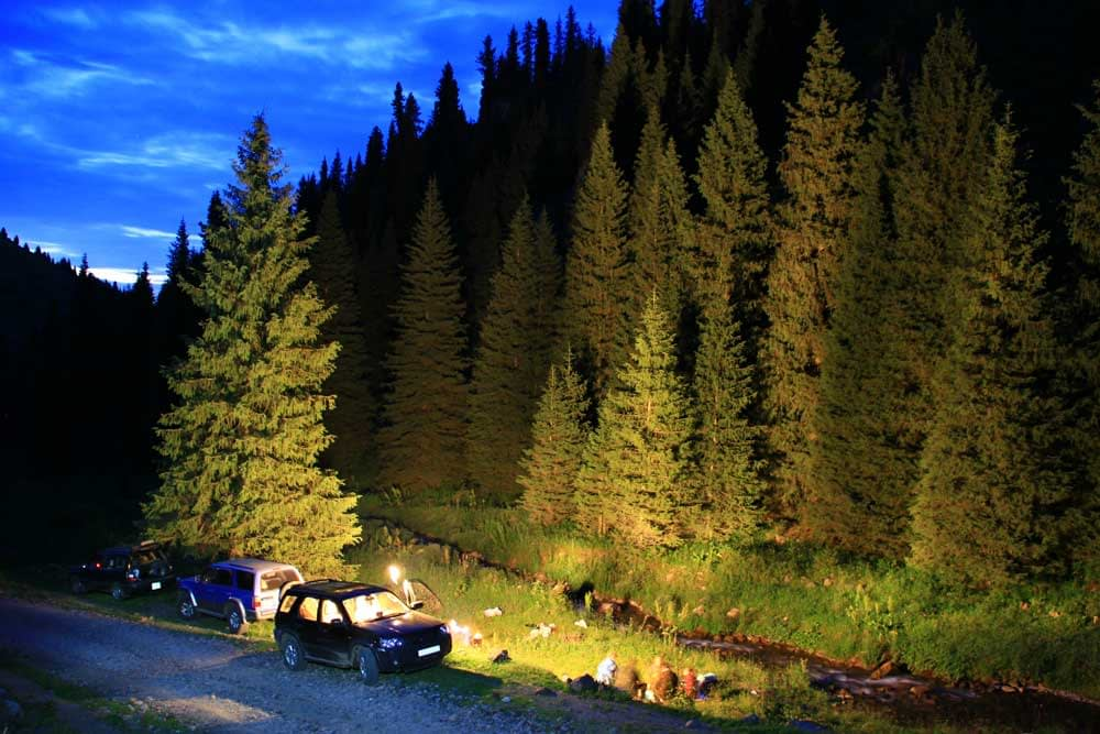 The Steps to Take to Ensure a Safe Camping Trip in Wolf Country
