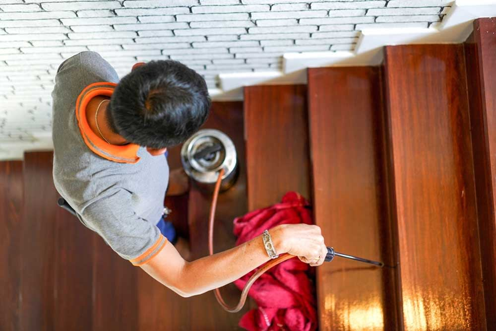 How to Kill Wood-Boring Insects