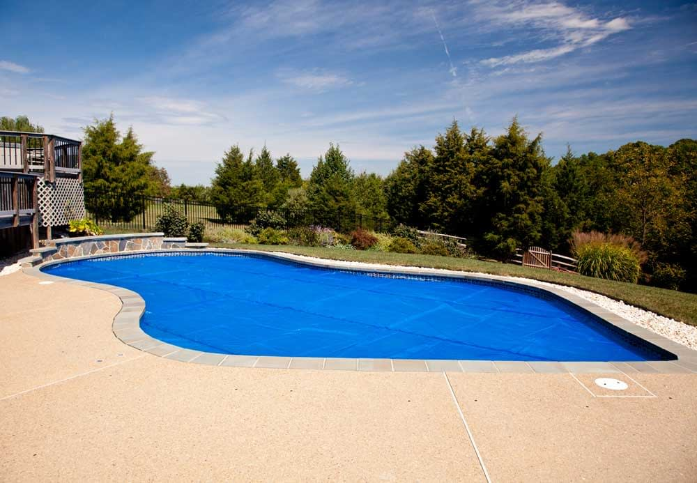 Natural Methods for Keeping Bees Away from Your Pool