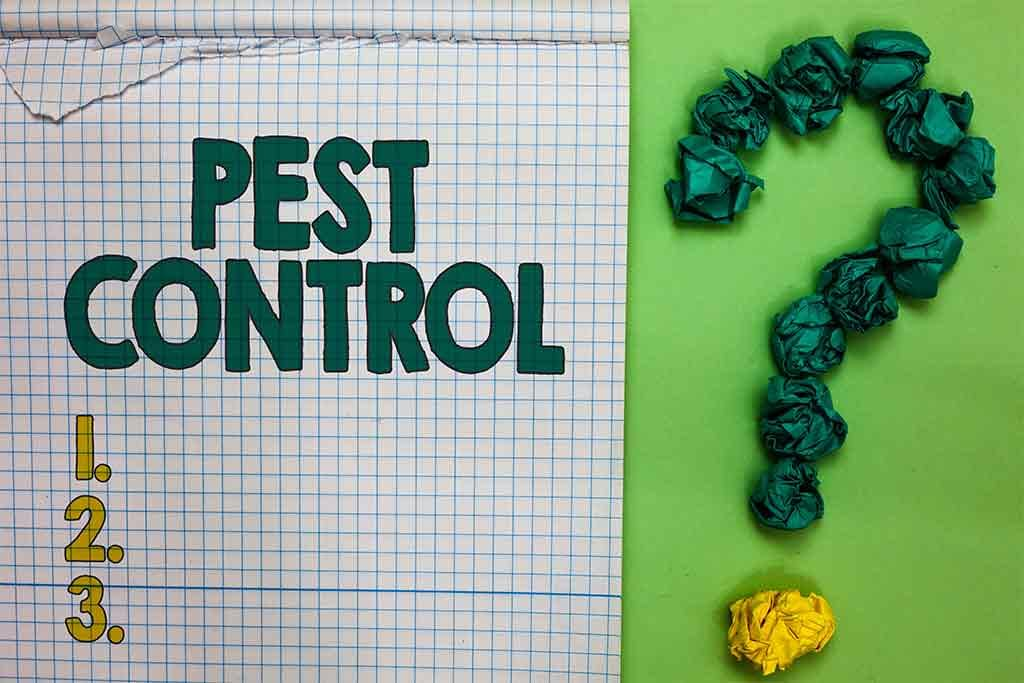 Do Popular Pest Control Methods Actually Work?